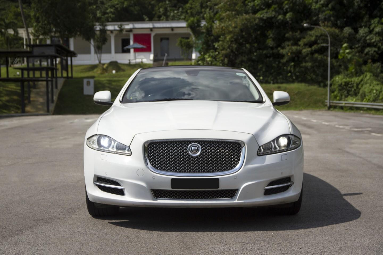 Head of white Jaguar XJL